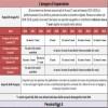 Isopensione, Ecco i requisiti e le condizioni per il 2018 [Guida]
