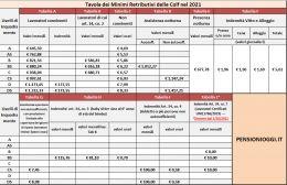 lavoro-domestico-ecco-i-nuovi-stipendi-minimi-dal-1-gennaio-2020-23423432